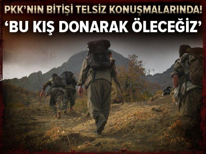 PKK'lı hainler: Bu kış donarak öleceğiz