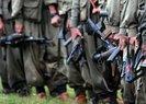 Terör örgütü PKK, iş adamını kaçırdı