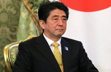 Japonya'da erken seçim