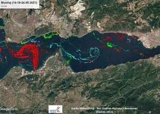 Türkiye'de bir ilk: İşte Marmara Denizi'ndeki müsilajın yoğunluk haritası! Tablo çok vahim