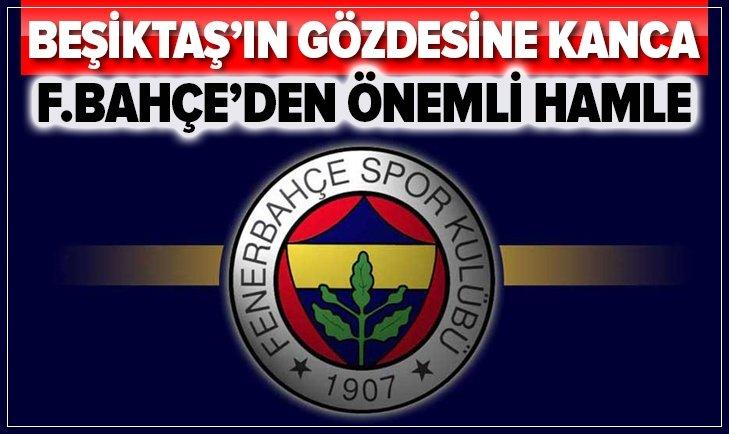 FENERBAHÇE'DEN BEŞİKTAŞ'IN ESKİ GÖZDESİNE KANCA!