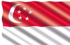 Bütçesi fazla veren Singapur'dan vatandaşlarına prim