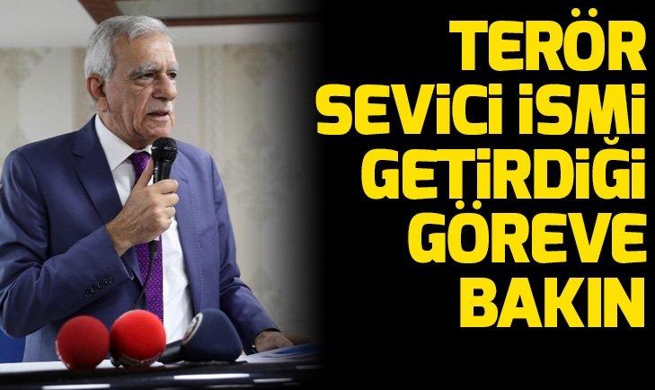 HDP'li Ahmet Türk'ten tepki çekecek karar! Terör sevici isim belediye şirketine müdür oldu