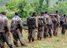 Son dakika: 300 PKKlı terörist Ermenistanda! Ermeni milislere eğitim veriyorlar