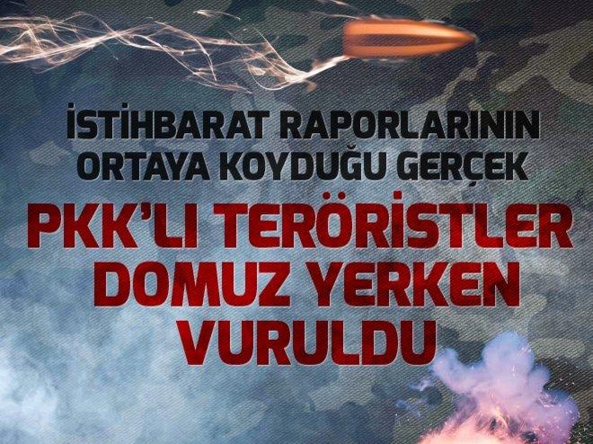 PKK'LI TERÖRİSTLER DOMUZ YERKEN VURULDU
