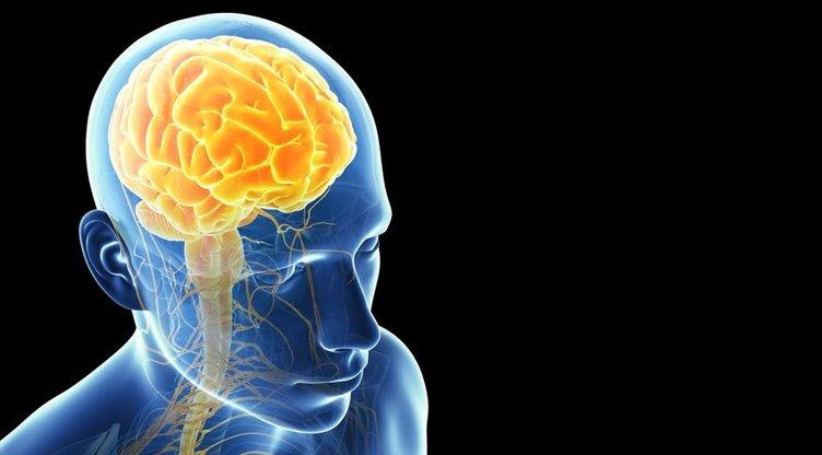 Uzmanlar beyni öldüren besinleri açıkladı!