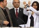 CHP'li Veli Ağbaba öldürülen YPG'li terörist Ceren Güneş'i Meclis'te konuşturmuştu