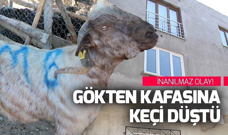 Bursa'da inanılmaz olay... Gökten kafasına keçi düştü