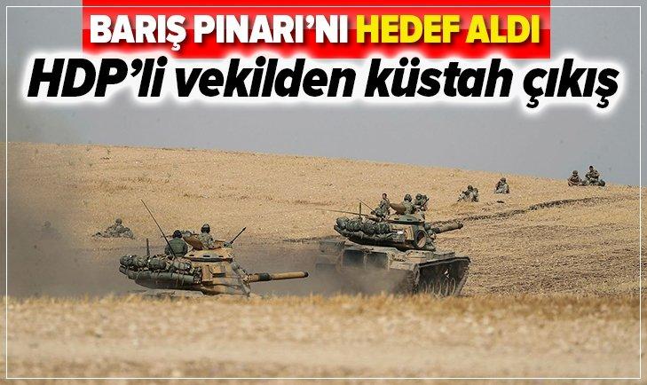 HDP'Lİ VEKİLDEN KÜSTAH SÖZLER: BARIŞ PINARI...