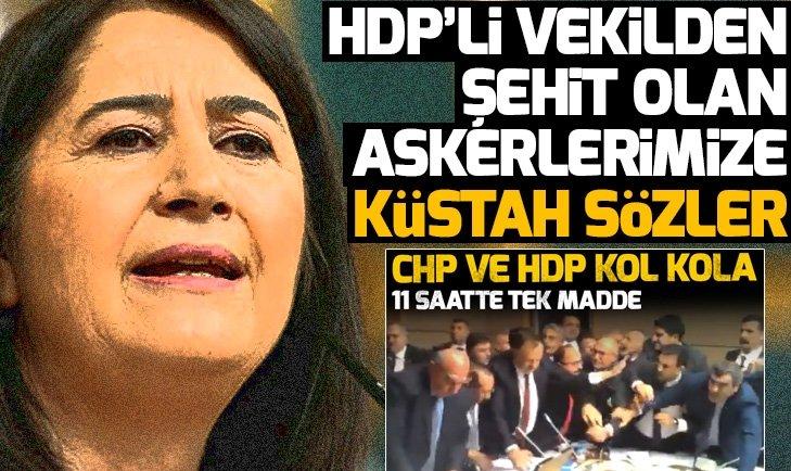 HDPli Serpil Kemalbaydan şehitlerimiz için küstah sözler!