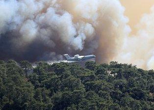 Türkiye yangına karşı tek yürek: Ünlü isimler de destek veriyor! Ormanlara ağaç dikilmesi için büyük kampanya başladı