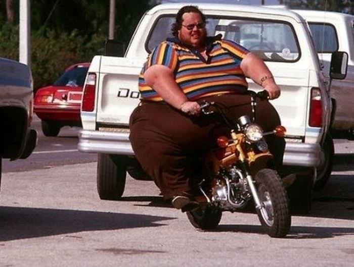 Смешные картинки про толстяков, майки прикольным рисунком