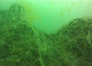 Son dakika | Marmara Denizi'nde büyük tehlike! Kameraya böyle yansıdı