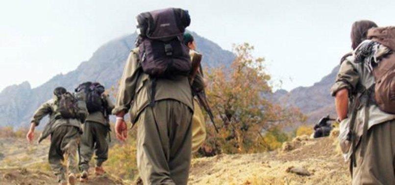 EYLEM HAZIRLIĞINDAKİ 3 PKK'LI YAKALANDI