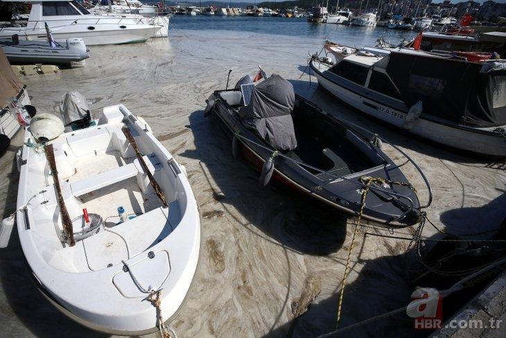 Marmara'da müsilaj seferberliği! İşte denizden toplanan salya mikarı