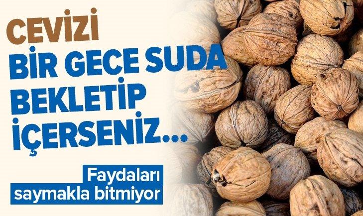 CEVİZİ 1 GECE SUDA BEKLETİP İÇERSENİZ...