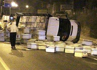 Mersin'de kızgın arılar yolu trafiğe kapadı! Kimse yaklaşamadı