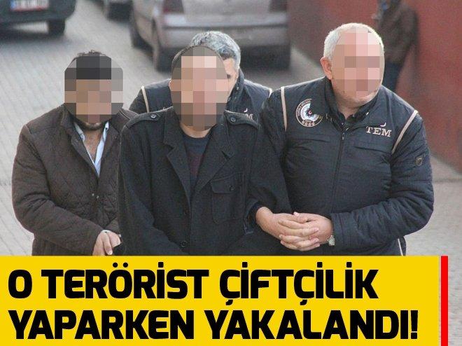 DEAŞ'IN SÖZDE 'TARIM BAKANI' KAYSERİ'DE YAKALANDI