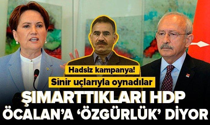 HDP'den haddi aşan kampanya! Öcalan'a özgürlük istediler