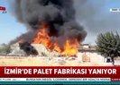 Son dakika: İzmir'de palet fabrikasında yangın! Olay yerinden ilk görüntüler  Video