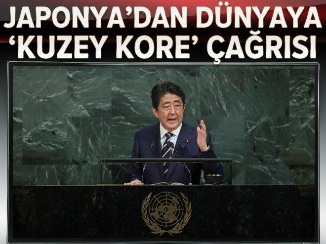 Abe'den dünyaya,Kuzey Kore'ye baskı çağrısı