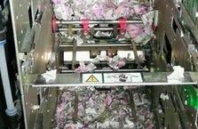 Hindistan'da ATM'ye giren fareler yaklaşık 9 milyon TL'yi yedi