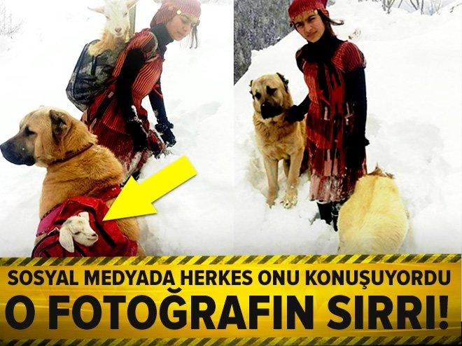 RİZE'DE ÇEKİLEN FOTOĞRAFIN SIRRI!