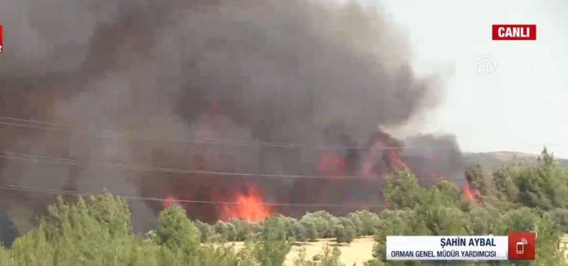 Son dakika: 5 ilde 10 noktada yangın! Orman Genel Müdür Yardımcısı Şahin Aybal son durumu A Haber'de anlattı