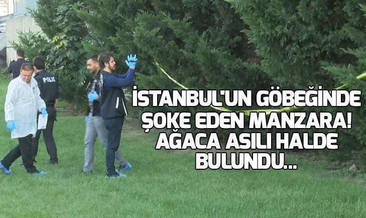 İSTANBUL'UN GÖBEĞİNDE ŞOKE EDEN MANZARA! AĞACA ASILI HALDE BULUNDU...