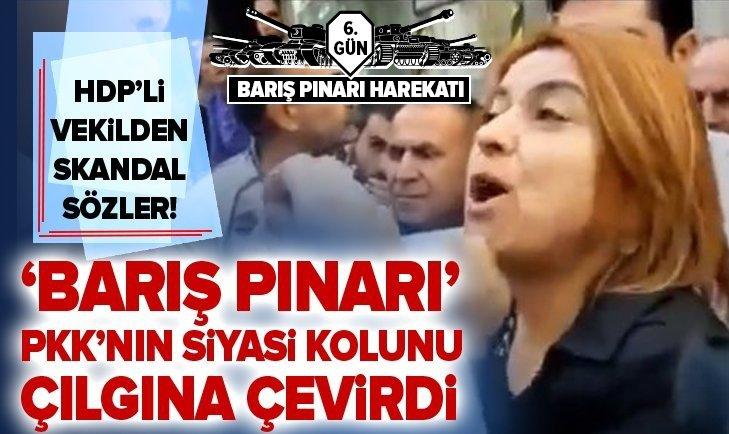HDP'Lİ VEKİLDEN SKANDAL SÖZLER! PKK'NIN 'SÖZCÜSÜ' TÜRKİYE NEFRET KUSTU...