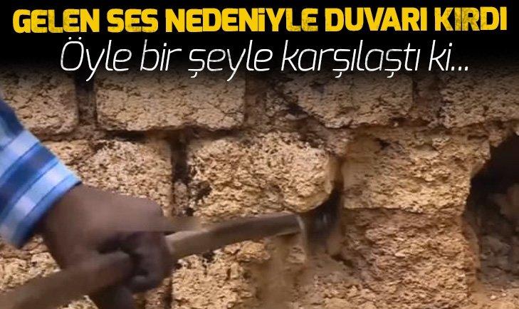 DUVARI KIRDI İÇİNDEN ÇIKAN ŞOKE ETTİ!