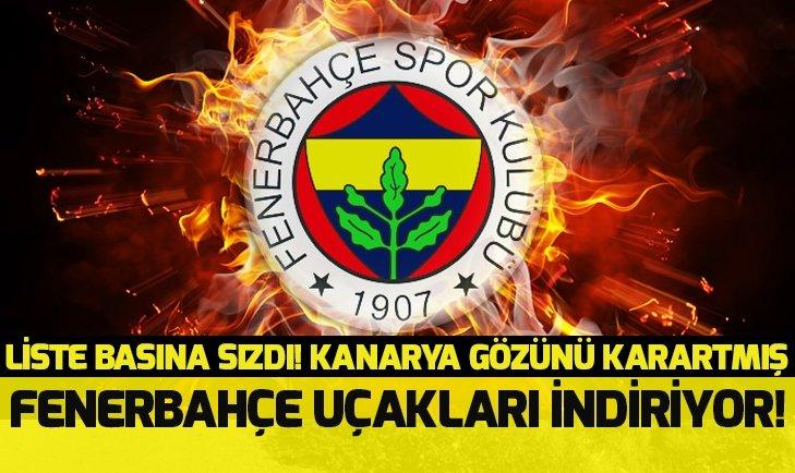 Son dakika Fenerbahçe transferleri! Kanarya büyük bombaları patlatıyor
