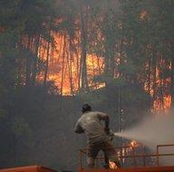 Manavgat, Köyceğiz, Çökertme, Marmaris orman yangınlarında son durum