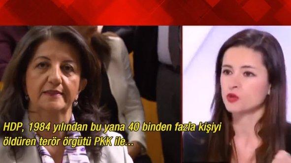 Fransız televizyonunda PKK gerçeğini anlattı