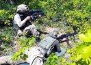 Son dakika: MSB duyurdu: Pençe-Kaplan Operasyonunda 9 terörist daha etkisiz hale getirildi