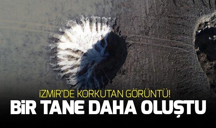 İZMİR'DE TARIM ARAZİSİNDE KORKUTAN GÖRÜNTÜ!