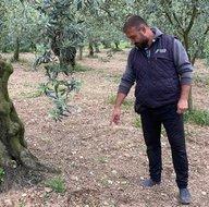 Son dakika: Zeytin ağaçlarını ilaçlarken tarlada öyle bir şey buldu ki... Ödül verilecek! 2 bin 200 yıllık...