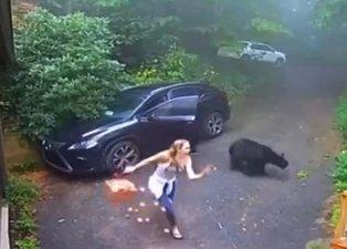 Otomobilinin kapısını açınca dehşete düştü! Aniden çıkan ayı...