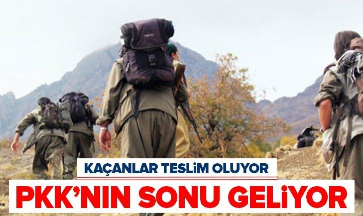 PKK'NIN SONU GELİYOR! KAÇANLAR TEK TEK TESLİM OLUYOR