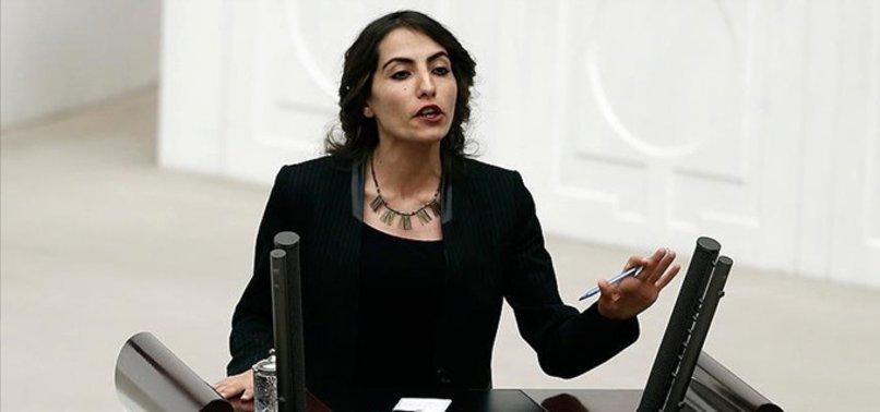 HDP'Lİ VEKİLLER HAKKINDA TERÖR FEZLEKESİ