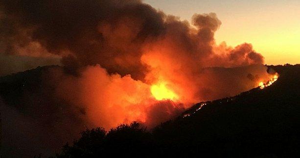 Orman yangınları ile ilgili oluşturulmak istenen algı operasyonuna belgeli yanıt!
