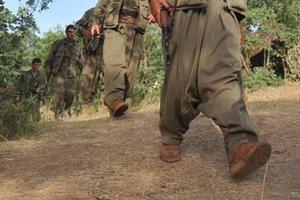 YPG/PKK sol terör örgütlerinin de hamisi oldu