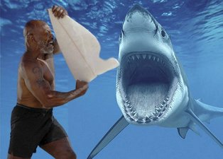 Dünyaca ünlü boksör Mike Tyson köpek balıklarına karşı! Aralarına daldı burnundan tutup...