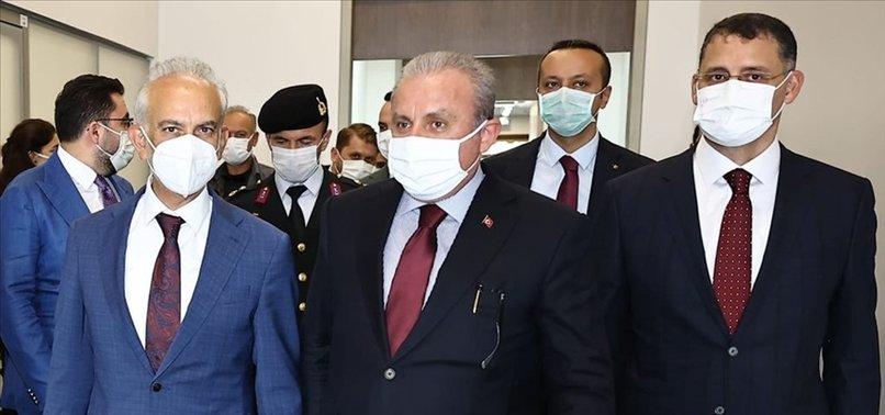 TBMM Başkanı Mustafa Şentop Azerbaycan Cumhurbaşkanı Aliyev ile görüştü