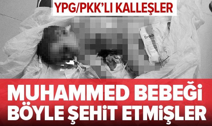 YPG/PKK'LI KALLEŞLER MUHAMMED BEBEĞİ BÖYLE ŞEHİT ETMİŞLER!