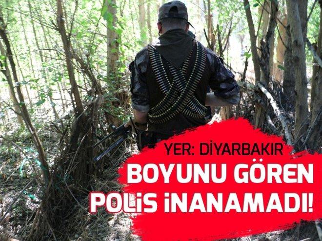 Diyarbakır'da şoke eden görüntü! Boyunu gören polis inanamadı