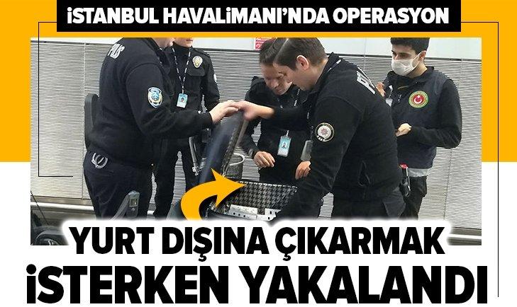 İSTANBUL HAVALİMANI'NDA OPERASYON! BÖYLE YAKALANDI