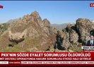 PKK'ya MİT'ten ağır darbe! Sözde Hakurk sorumlusu etkisiz hale getirildi