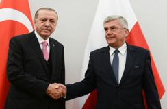 Erdoğan Karczewski'yi kabul etti