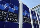 NATO'dan skandal PKK planı!